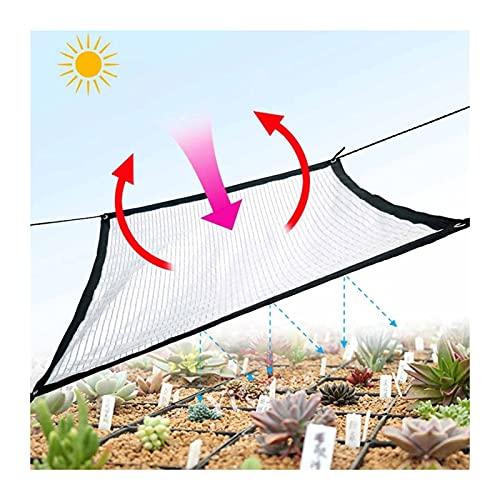 ZHANWEI Paño De Sombra, 85% Protección UV Paño Sombra, Usado para Balcón Terraza Valla Privacidad, Polietileno Espesado con Ojal Personalizable Protector Solar (Color : Silver, Size : 1mx2m)
