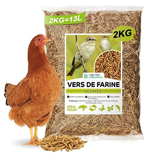 Vers de Farine séchés, 2kg Correspond à 13000ml, Friandises pour Oiseaux, Poissons, Tortues, Hérissons, Rongeurs et Reptiles