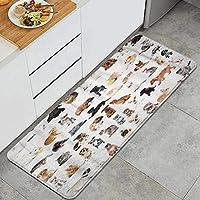 NIKIVIVI キッチンマット 洗える、かわいいペットの動物グループ白い飼い猫犬ハムスターバニータートル、ラグ キッチン カーペット 滑り止め 廊下敷き フロアマット、家、オフィス、流し、台所マット 45 x 120