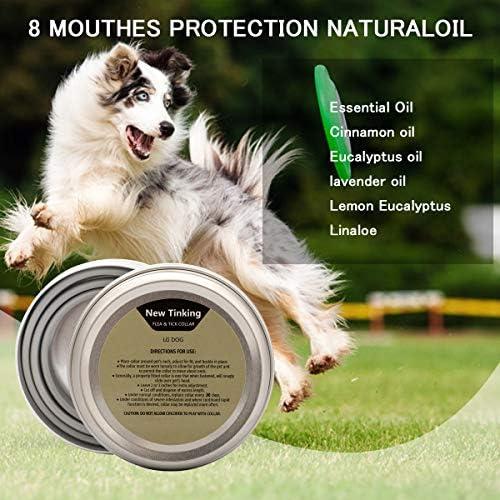 LAOYE Collier Anti Puces pour Chiens Collier Antiparasitaire Anti-puces Chien Collier Anti Tique et Puce Naturel