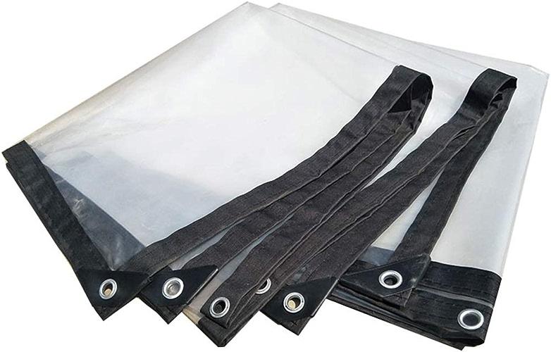 Tente Transparente CHAOYU Bache Transparent épaississant Liseret Plastique poreux bache imperméable fenêtre Balcon Culture de Serre Film (Taille   3m10m)