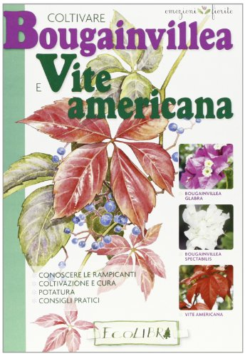 Coltivare bouganvillea e vite americana
