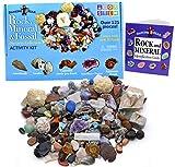 Dancing Bear Roca, minerales y fósiles Kit de recolección de Actividad...
