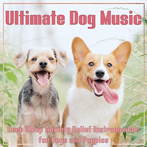 Ultimate Dog Music: Deep Sleep Anxiety Relief Instrumentals for Dogs and Puppies