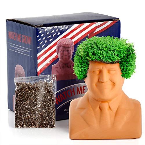 Donald Trump Chia Deko-Pflanzgefäß (11,4 x 11,4 x 8,9 cm, klein) – Chia-Samen enthalten – Pflanzen und wachsen Donald Trump's Hair – lustiges Geschenk