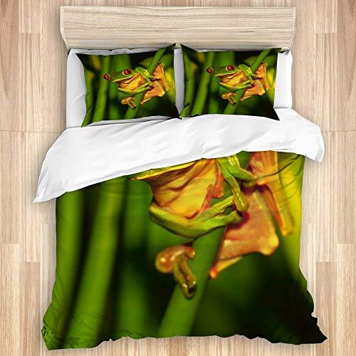 LASINSU Bettwäsche Set,Kleiner grüner Frosch mit den roten Augen, die auf exotischer Betriebswilder Natur von Costa sitzen,1 Bettbezug 240x260cm+2 Kopfkissenbezug 50x80cm