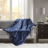 Beautyrest Luxury Quilted Weighted Blanket Ultra Soft Warm Mink with Glass Beads Filling and Zipper Cover Relaxing Pressure Relieving, 60X70-12Lbs, Indigo