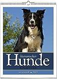 Literarischer Hundekalender 2020: Wochenwandkalender mit 53 Farbfotografien