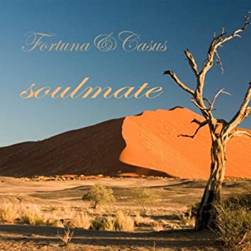 Soulmate (Original)