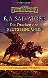 R. A. Salvatore: Die Drachen der Blutsteinlande