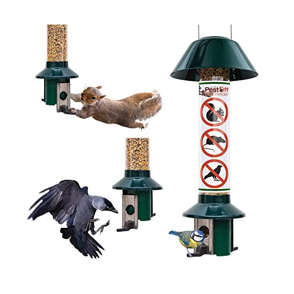 Roamwild Squirrel Proof Wild Bird Feeder PestOff