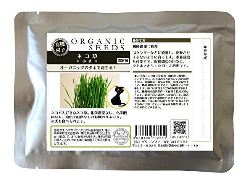 グリーンフィールド 有機種子 ねこ草<小麦> (有機種子・固定種) [中袋 1dl] A262