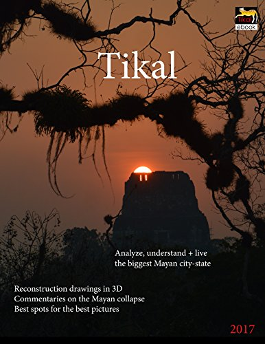 Tikal: Analyze, understand and live the biggest Mayan city-state (English Edition)