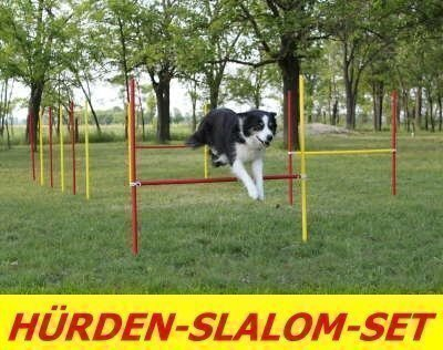 norrun Agility-ÜBUNGS-HÜRDEN/Slalom-STANGEN-Set IN ROT/GELB