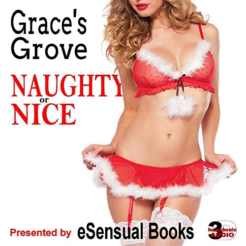 Naughty or Nice audiobook cover art