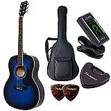 HONEY BEE ハニービー アコースティックギター フォークギタータイプ F-15M/BLS マットフィニッシュモデル 初心者入門チューナーピックセット