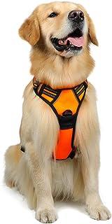 rabbitgoo Dog Harness, No-Pull Pet Harness with 2 Leash Clips, Adjustable Soft Padded Dog Vest, Reflective No-Choke Pet Ox...