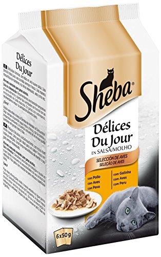 SHEBA \