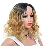 14 INCH Short Curly Ombre Synthetic Hair Wig Full Head Wigs Heat Resistant Fibre Replacement Hairpiece Party Fancy Dress Halloween Wigs for Women (BlackT27#)