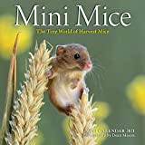 Mini Mice Mini Wall Calendar 2021: The Tiny World of Harvest Mice