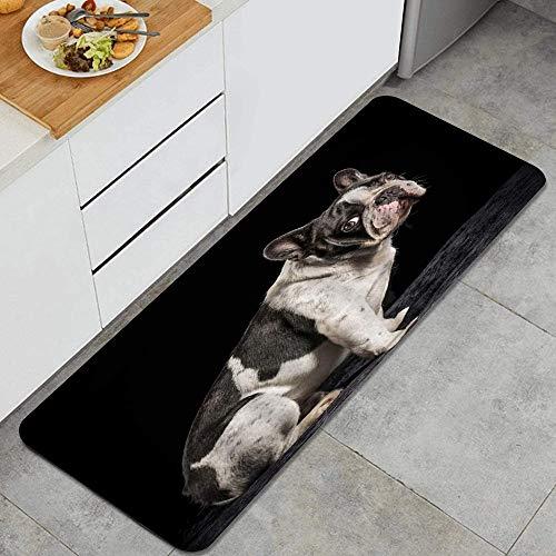 Anti Fatiga Cocina Alfombra del Piso,Bulldog Animal lindo Francia Bulldog blanco y negro sobre fondo negro Cachorro,Antideslizante Acolchado Puerta Habitación Bañera Alfombra Almohadilla,120 x