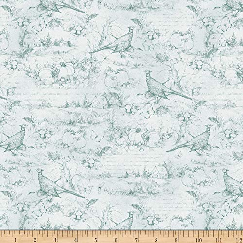 Wilmington Seeds of Gratitude Toile Light Blue Quilt Fabric By The Yard