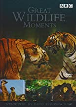 great wildlife moments dvd