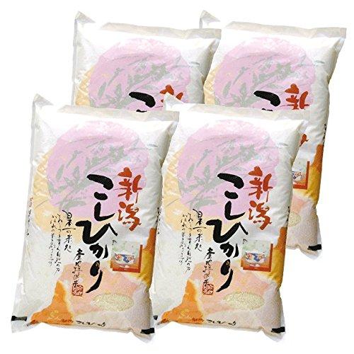 【精米】 新潟県産 コシヒカリ 20kg (5kg×4袋) 令和元年産 新潟県直送