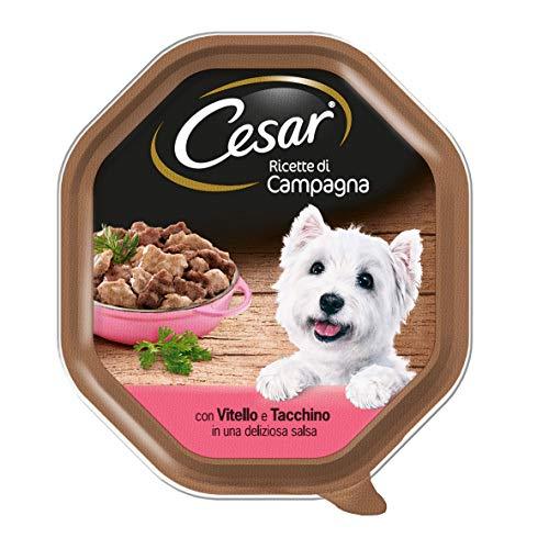 Cesar Campagna-Rezepte für Hunde, mit Kalbsleder und Pute, in Einer köstlichen Sauce, 150 g – 14 Behälter
