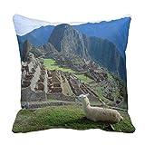 MrRui South America, Peru. a Llama Rests On a Hill Throw Pillow Case Cushion Cover 18 x 18 Inches