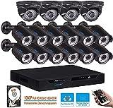 LONNKY 16CH Full 1080P Sistema de cámara de vigilancia con 4TB HDD, Grabador de video digital 5 en 1 con 16 cámaras CCTV tipo bullet Dome para exteriores de 2MP, Disco duro negro de 2TB preinstalado
