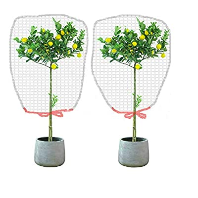 Rain Bingo 3pcs Insect Bird Barrier Netting Mesh with Drawstring 41.5×27.5in - Hunting Plant Protecting Garden Mesh Netting Plant Cover for Plant&Fruits