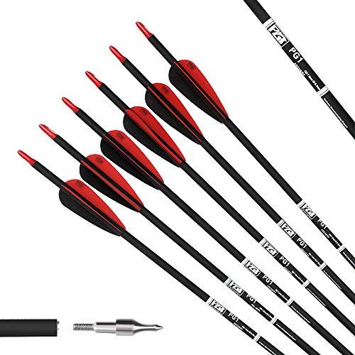 PG1ARCHERY 12er Pfeile Carbon, 30 Zoll Bogenpfeile für Bogenschießen mit Kunststoffbefiederung, Jagdpfeile für Bogen, Traditionellen Bogen, Recurvebogen und Langboge