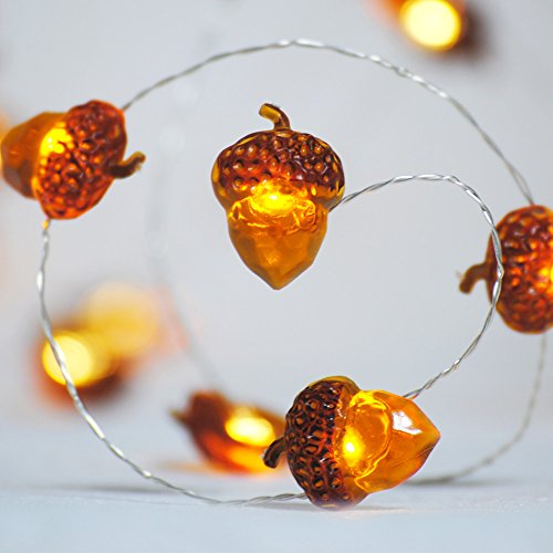 Christmas String Lights, Acorn 10ft Silver Wire 40 LED Battery Powered with Dimmable Remote Timer for Ice Age, Indoor Outdoor, Wedding, Birthday Bedroom Fireplace Mantel Xmas Decorations