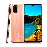 Xgody 6.3' Unlocked 4g LTE Smartphones Android 9.0 Screen 32GB+3GB Ram Dual Camera Global Version Unlocked Smartphones (M30S Orange)