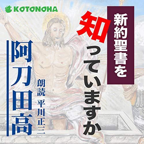 『新約聖書を知っていますか』のカバーアート