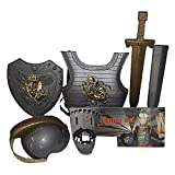 THEE Disfraz de Caballero Medieval Juguetes Armadura para Niños
