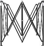 AMERICAN PHOENIX Canopy Parts (10x10 Frame, Black)