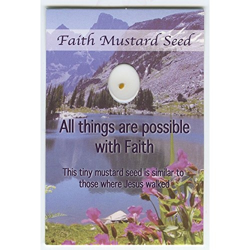 Faith Mustard Seed Wallet Cards with Mustard Seed (Pack of 12)