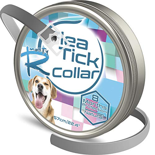 Rmolitty Collare Antipulci Cani, Antiparassitario Cani, 8 Mesi di Protezione 57cm si Adatta per Piccolo Medio Grande Cane
