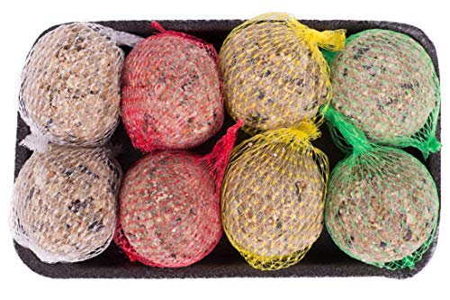 Pfiffikus Meisenknödel 8 Stück in 4 verschiedenen Sorten | Vogelfutter mit Insekten, Beeren, Nüssen | Hochwertiges Wildvogelfutter zur Ganzjahresfütterung heimischer Vögel | Made in Germany