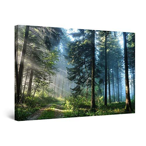 Startonight Bilder Straße im Wald, Leinwandbilder Moderne Kunst, Landschaft Wanddeko Kunstdrucke, Wandbilder XXL 80 x 120 cm, Tag Nacht Bild