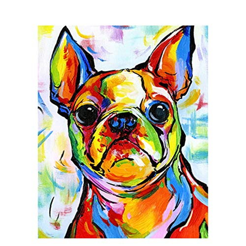 DIY 5D Diamond Painting by Number Kit for Adult, Full Round Drill Diamond Embroidery Kit Home Wall Decor Color Dog 11.8x15.7 in by Bemaystar