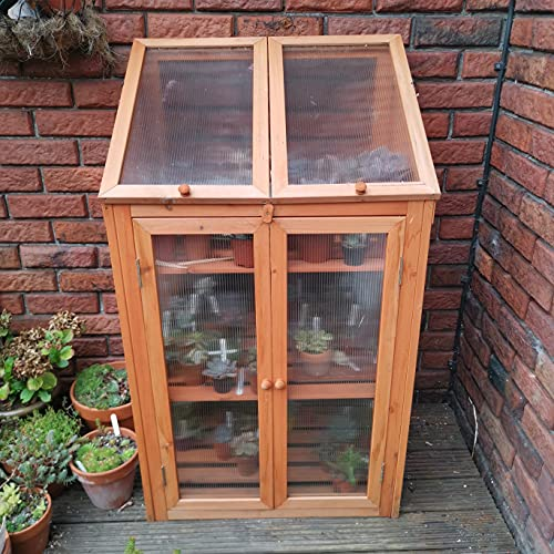 Samuel Alexander Wooden Mini Greenhouse Cold Frame - Small Greenhouse H120 x W69 x D49cm (Large, Natural)