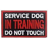 Patch Service Dog...image