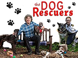 Image: Watch The Dog Rescuers | Follow comedian and dog-lover Alan Davies and the inspirational work of The Royal Society for the Prevention of Cruelty to Animals as they continue their crusade against cruelty to our beloved pets