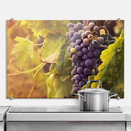 Spritzschutz Toskanische Weinrebe Küche Küchenrückwand Kochbereich Weintrauben Ernte Herbst Natur Italien Weinlese Wall-Art - 100x70 cm