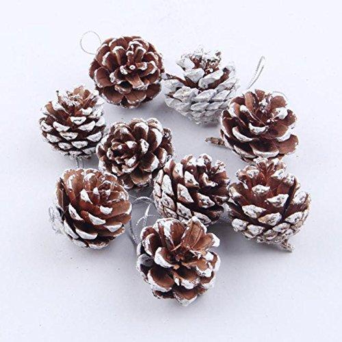 LoveLeiter Tannenzapfen 3-4cm Pinus nigra Schwarzkiefern Zapfen Kiefernzapfen Tannen Zapfen Naturzapfen Weihnachtsdeko Weihnachtsbaum Dekoration Adventsdeko(9 Stück)