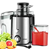 Juicer Electric Centrifugal Extractor Whole Fruit Citrus Vegetables 2 Speed 600w BPA-Free (Sliver)
