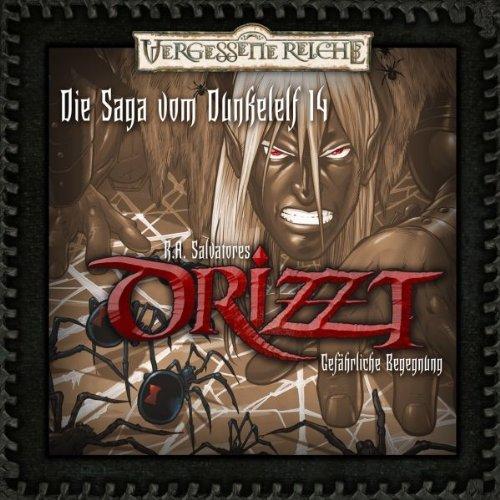Gefährliche Begegnung (DRIZZT - Die Saga vom Dunkelelf 14) Titelbild